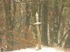 madonna-dei-boschi-in-inverno