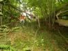 nel-bosco-3